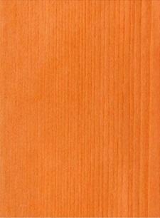 Ash Top Orange 26.035