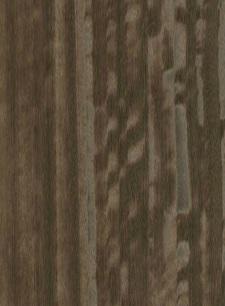 Eucaliptus 3D Marrone E5.S.002