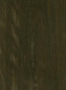 Eukaliptus Rigato Bio E5.B01