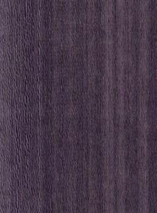 Koto Top Violet 04.036